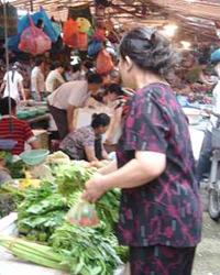 越南金融动荡