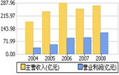 2008银行股年报
