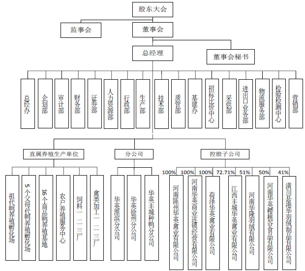 发行人组织结构图