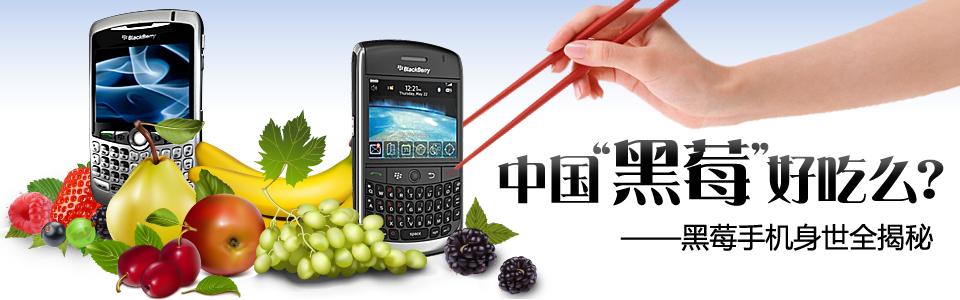 身世揭秘-中国的黑莓好吃么?