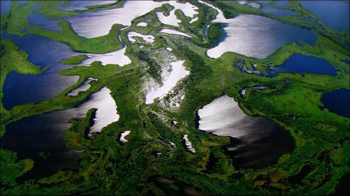 我们共同捍卫地球 家园 蓝光碟赏析图片