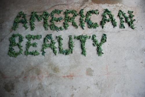 环保招贴设计 壁纸