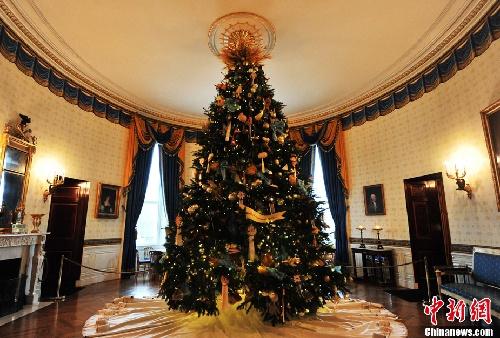 美国白宫圣诞树正式亮相 组图