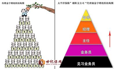 中国太保支公司组织结构金字塔与传销金字塔比较