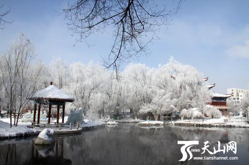 乌鲁木齐市水磨沟公园雪景雾凇迷人眼