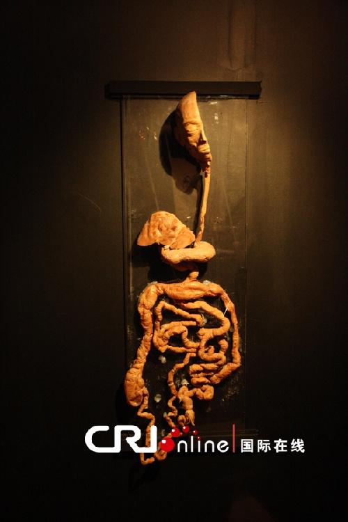 人体艺术欧美泰国_泰国曼谷举办\