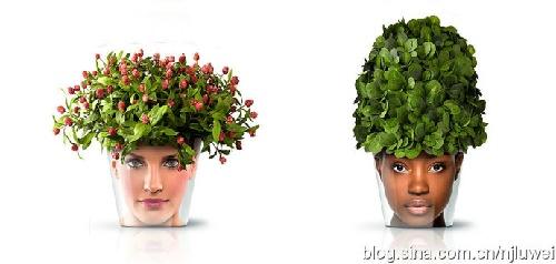 diy小花盆图案设计