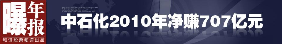 2010年和讯曝年报之中石化