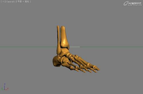 人体骨骼结构图脚骨_脚的部位结构图_脚的部位名称_脚的各部位名称_脚的部位结构图 ...
