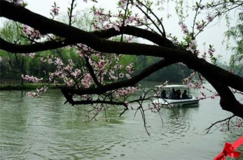 扬州瘦西湖拥抱七彩春天