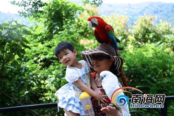 六一儿童节,小朋友在呀诺达与雨林动物们快乐合影(通讯员马磊斌摄)