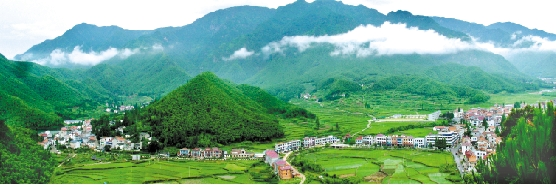 安吉:党建创新领航中国美丽乡村建设