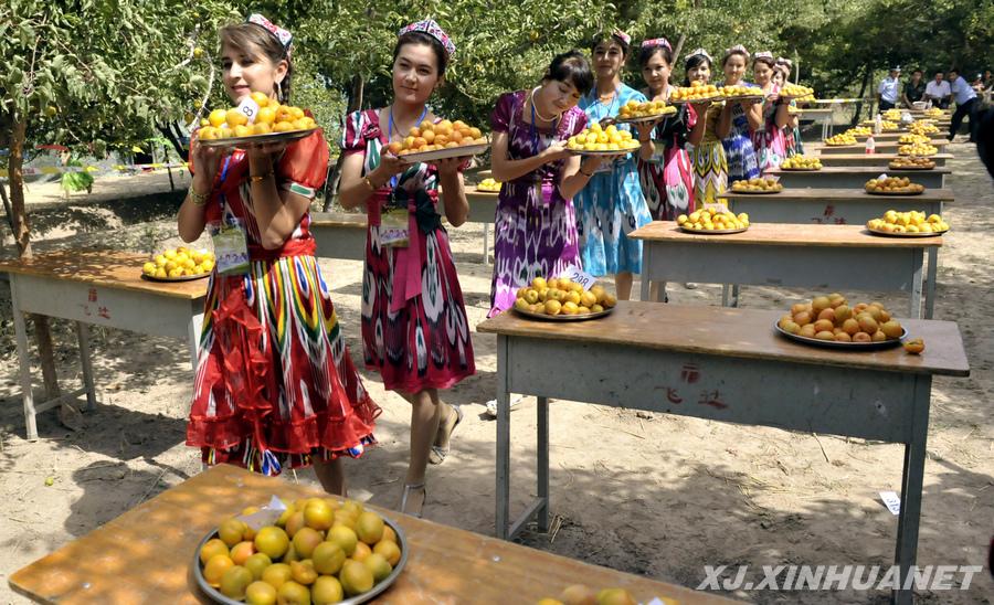 新疆自治区 英吉沙县地标 中国第一大杏园 - 西部落叶 - 《西部落叶》·  余文博客