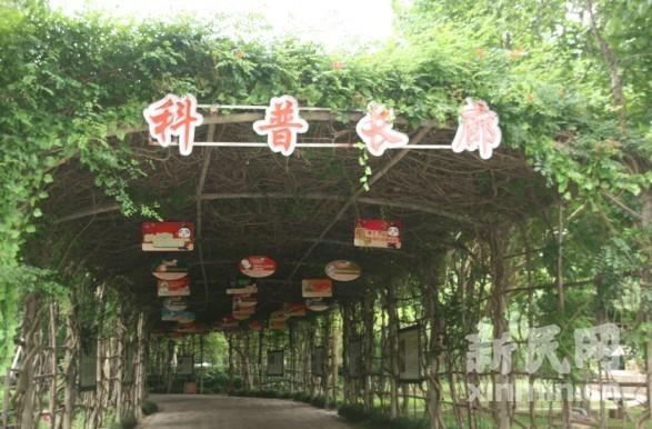 上海野生动物园整修一新的科普长廊里