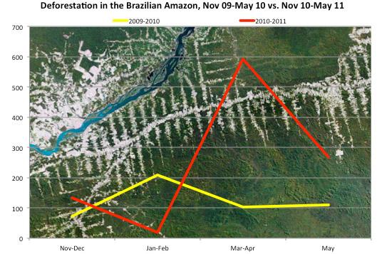 巴西官方数据显示亚马逊森林砍伐面积大幅上升