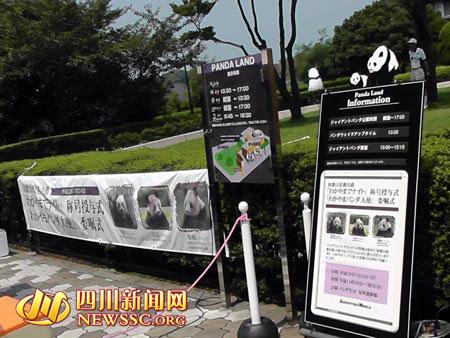 白浜野生动物园内到处都是熊猫授勋的海报